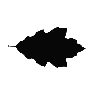Tooth lobed leaf silhouette  listed in plants decals.