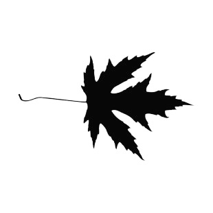 Toothed maple leaf silhouette listed in plants decals.