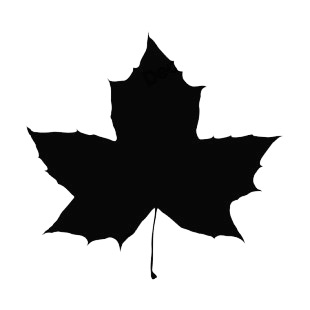 Toothed maple leaf silhouette plants decals, decal sticker ...