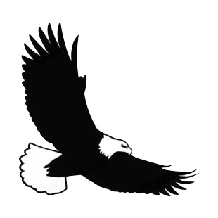 Bald eagle flying listed in birds decals.