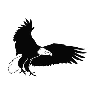 Bald eagle with wings wide open listed in birds decals.