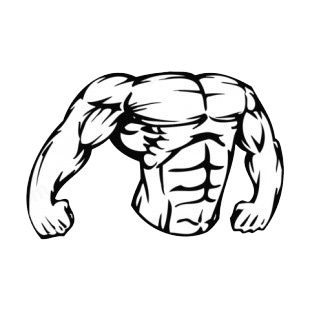 Muscular body showing chest and arms mascot listed in mascots decals.