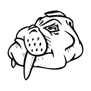 Walrus face with tusks mascot listed in mascots decals.