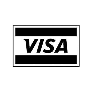 Visa logo listed in famous logos decals.