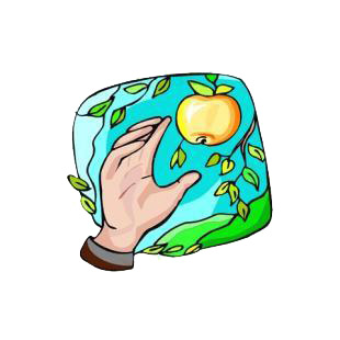 Hand picking up an apple from apple tree listed in agriculture decals.
