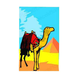 Camel next to the pyramids listed in camel decals.