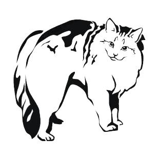 Cat listed in cats decals.