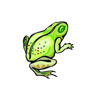 Frog listed in amphibians decals.