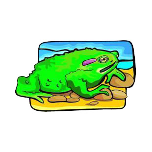 Green toad listed in amphibians decals.