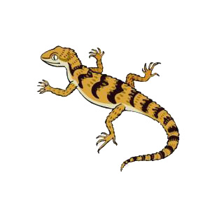 Lizard listed in amphibians decals.