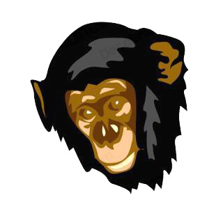 Chimpanzee face listed in monkeys decals.