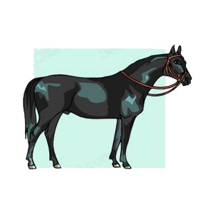 Black horse listed in horse decals.