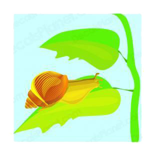 Snail on a leaf listed in insects decals.