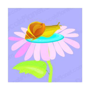 Snail on a flower listed in insects decals.