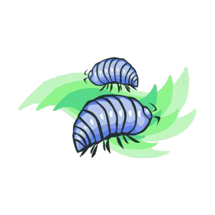 Roly poly listed in insects decals.