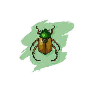 Scarab listed in insects decals.