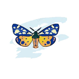 Moth listed in butterflies decals.
