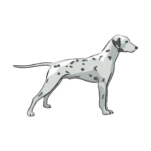 Dalmatian listed in dogs decals.