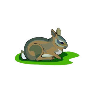 Brown bunny sitting down listed in rabbits decals.