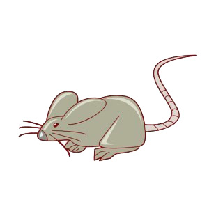 Rat with long tail listed in rodents decals.