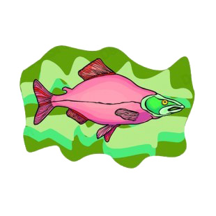 Pink with green head fish listed in fish decals.