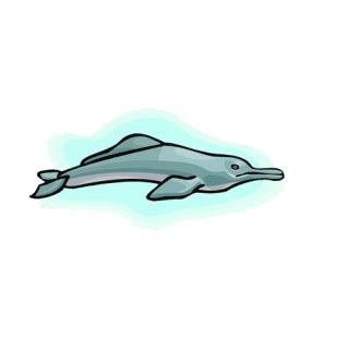 River dolphin underwater listed in fish decals.