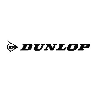 Dunlop logo listed in famous logos decals.