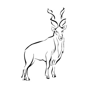 Mountain Gazelle listed in more animals decals.