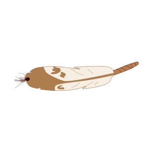 Eagle brown feather listed in symbols and history decals.