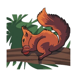 Squirrel eating chestnut  on a branch listed in more animals decals.