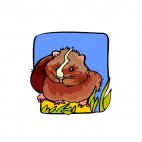 Brown with white stripe guinea pig, decals stickers