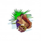Brown squirrel with pine cone, decals stickers