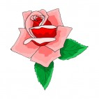 Pink rose with leaves, decals stickers