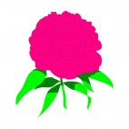 Pink peony with leaves, decals stickers