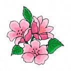 Pink roses with leaves, decals stickers