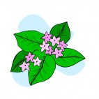 Pink flowers with leaves blue backround, decals stickers