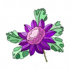 Purple flower with leaves, decals stickers
