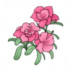 Pink flowers with green leaves, decals stickers