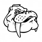 Walrus face with tusks mascot, decals stickers