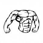 Muscular body showing chest and arms mascot, decals stickers