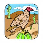 Vulture on a cactus, decals stickers