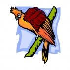 Red bird, decals stickers