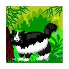 Black and white cat, decals stickers