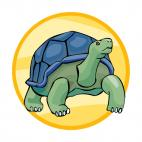 Giant tortoise, decals stickers