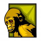 Monkey, decals stickers