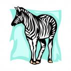 Zebra, decals stickers