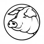 Pig head logo, decals stickers