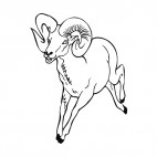 Moutain sheep running, decals stickers