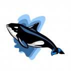 Killer whale underwater, decals stickers