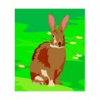 Brown hare sitting down, decals stickers